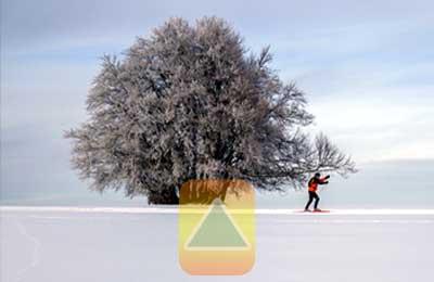 Langlauf Skimode